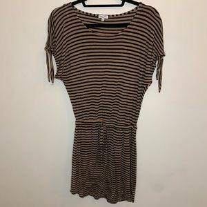Splendid Stripe Mini Dress (with White Slip)